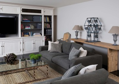Stark Design Family Room